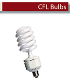 Minerals In CFL Bulb